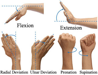 wrist movements defined